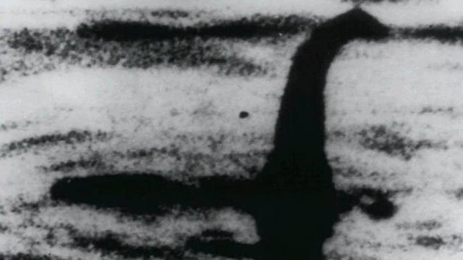 Scientists to use DNA tests in search for Loch Ness monster