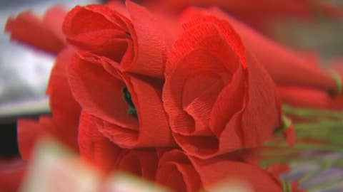 The 'poppy lady' hand-crafts poppies in honor of veterans