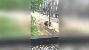 Cell phone footage captures the flash floods impacting Ellicott City, Maryland.