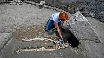 Officials uncover the skeleton of a man crushed by an enormous block of stone while trying to escape the eruption of Mt. Vesuvius in 79 A.D.
