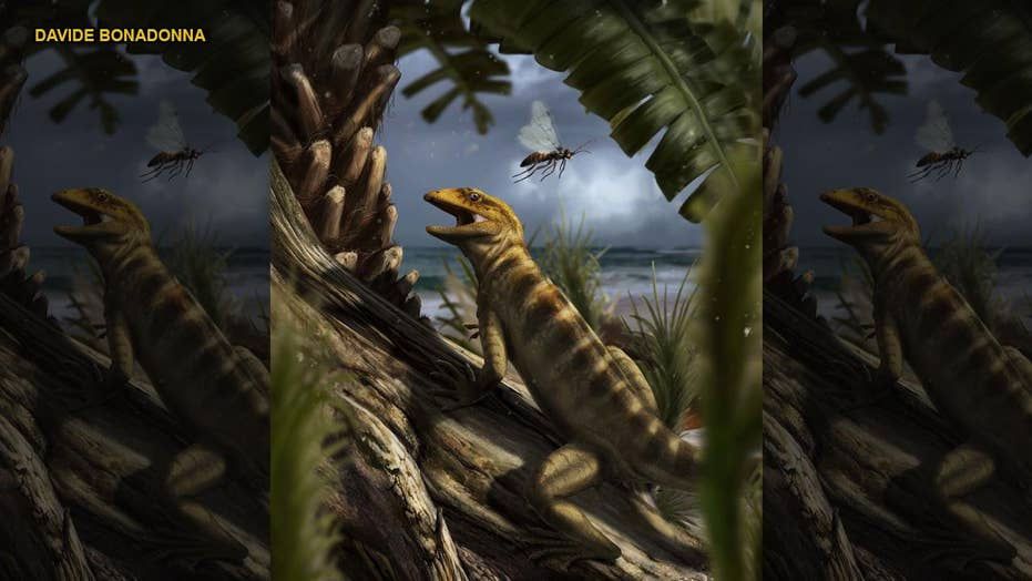 240 million year-old 'mother of all lizards' discovered