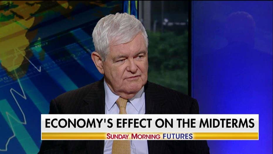 Gingrich: We Are Closer to a 'Red Wave' Than a 'Blue Wave'