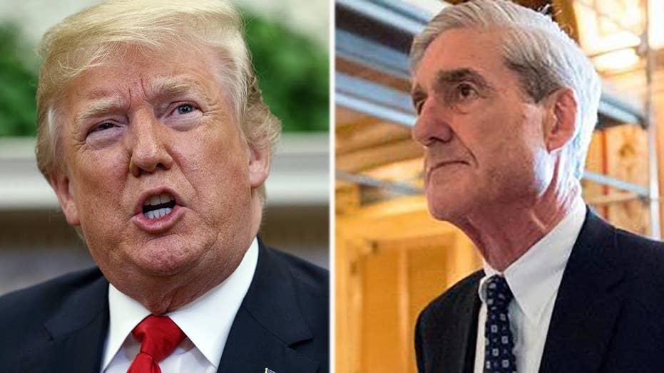 President Trump: Mueller probe 'not even constitutional'