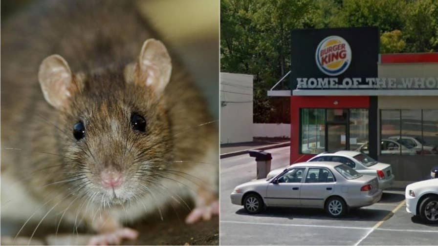 A Delaware Burger King has been temporarily shut down for rodent infestation.