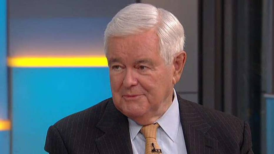 Newt Gingrich: There will be a red wave this fall