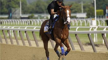 Justify's Triple Crown win brings us together to admire an uncommonly gifted horse
