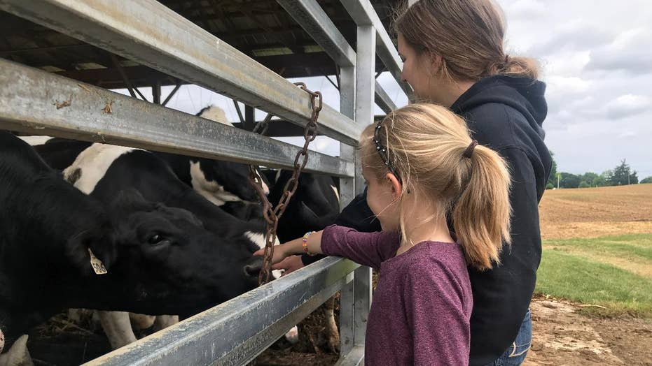 Dairy farmers hit hard by declining demand