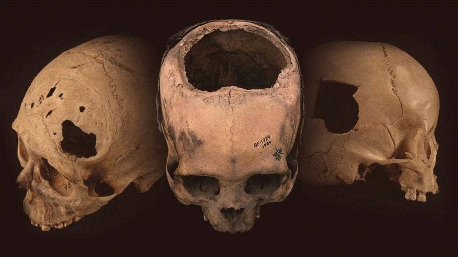 'Dragon Man' claimed as potential new human species after analysis of China skull