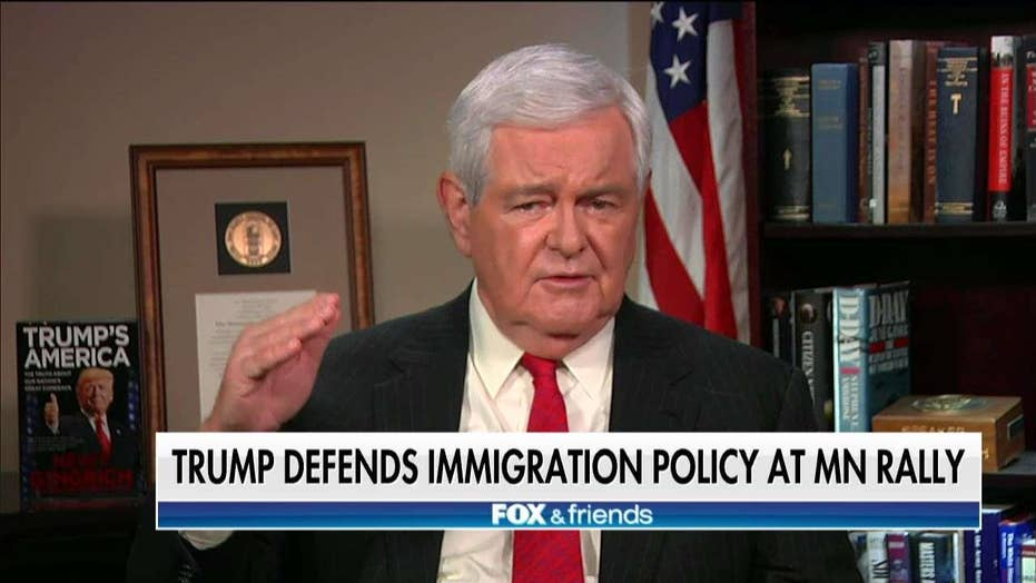 Gingrich Calls Out 'Remarkable Hypocrisy' From the Left on Immigration