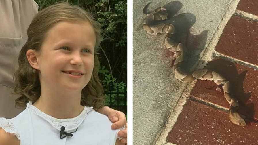 The nine-year-old was climbing out of the pool when she was bitten on the hand by what turned out to be a deadly copperhead.