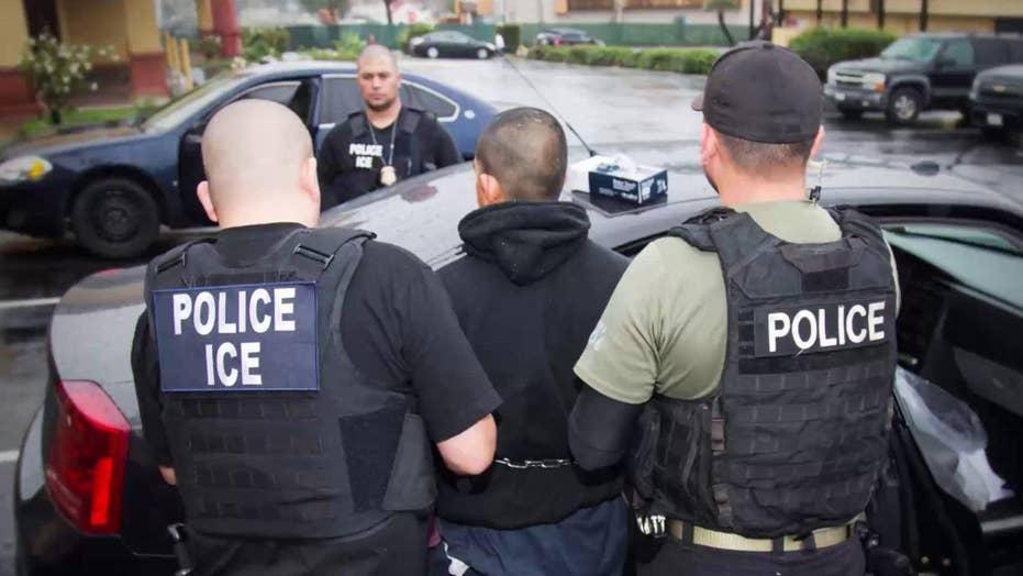 Left-wing Democrats push to abolish ICE