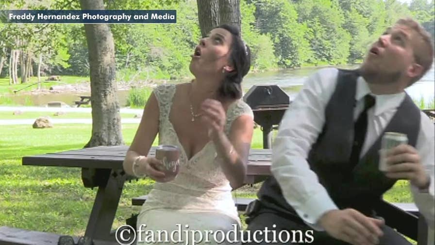 Couple nearly hit by falling tree branch during wedding photo shoot.