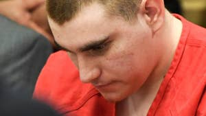 The commission investigating the Parkland shooting heard disturbing details about the shooter. According to officials, Nikolas Cruz's late mother allowed him to buy a gun despite opposition by counselors.