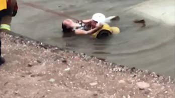 Video shows a firefighter rescuing a woman from a car that went into a canal.