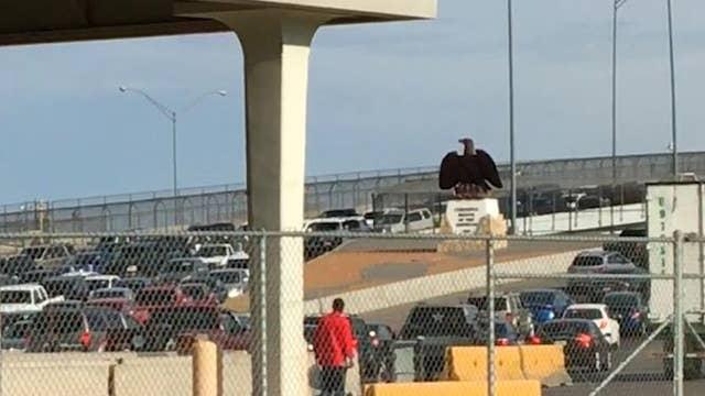 Border agents stopping migrants on international bridges