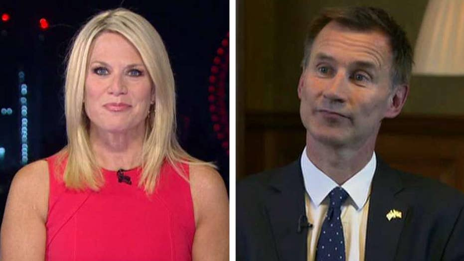 UK Foreign Secretary Jeremy Hunt on NATO, Russia and Brexit