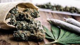 Since Colorado and Washington became the first states to fully legalize marijuana for recreational purposes in 2012, a green wave has swept across the country as more states OK marijuana use on at least some level.
