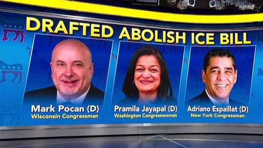 A new Fox News poll shows that the majority of voters aren't on board with the idea of eliminating the Immigration and Customs Enforcement agency; reaction from Katrina Pierson, senior adviser for Trump's 2020 campaign, and David Brown, Democratic strategist.