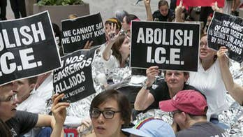 Democrats abandon 'abolish ICE' movement; panel debates on 'The Story.'