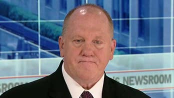 On 'America's Newsroom,' former ICE director slams Democrats who 'vilify' the agency.