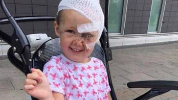 A 4-year-old girl from England was mauled by a cross-breed dog while playing at a pal's house. The toddler was immediately taken to a hospital with horrific facial and head injuries.