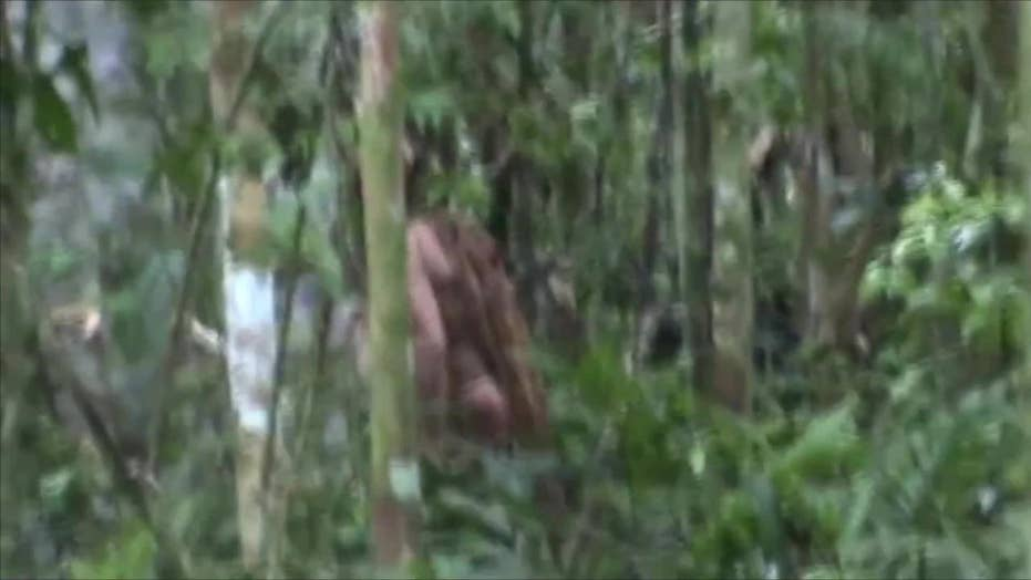 Rare video of Amazonian indigenous Native goes viral
