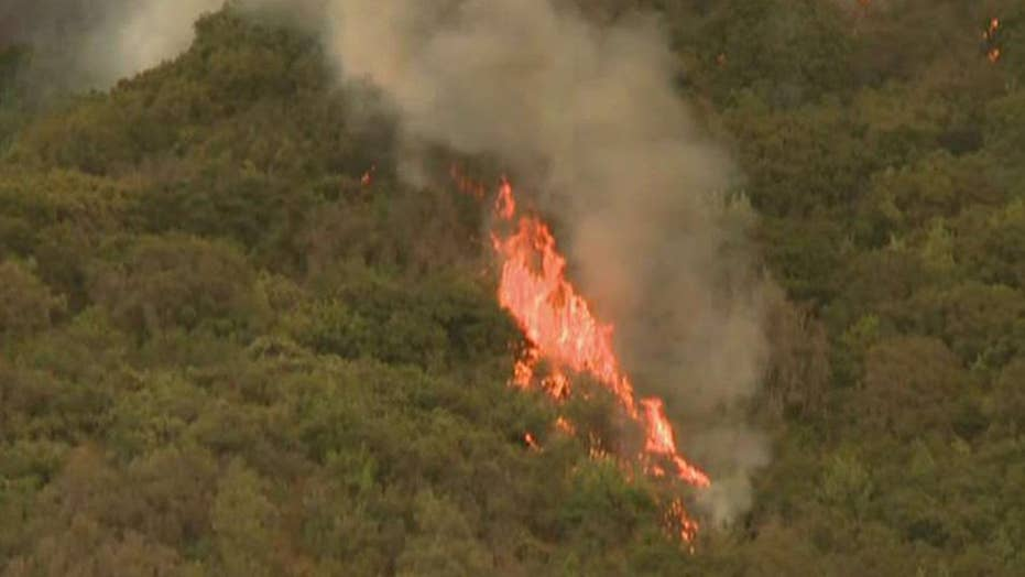 Wildfire forces closure of Yosemite National Park