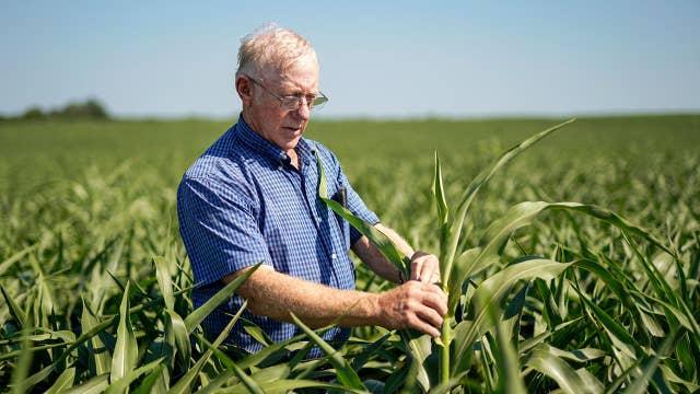 Impact of tariffs on US farmers