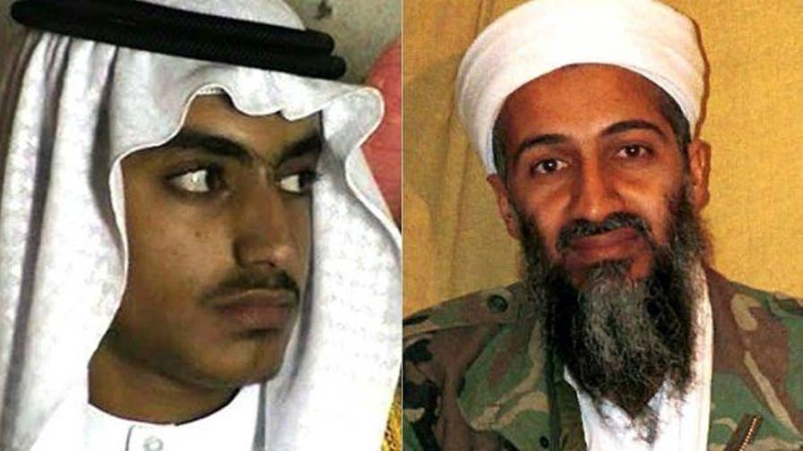 Usama bin Laden's son, Hamzi, went to Afghanistan to become and Al Qaeda leader despite Usama's brothers' pleads begging him not to follow in his father's infamous footsteps.