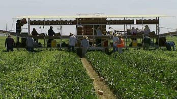 Some farmers feel they are being targeted as Beijing looks to apply political pressure on the Trump administration; William La Jeunesse reports from Los Angeles.