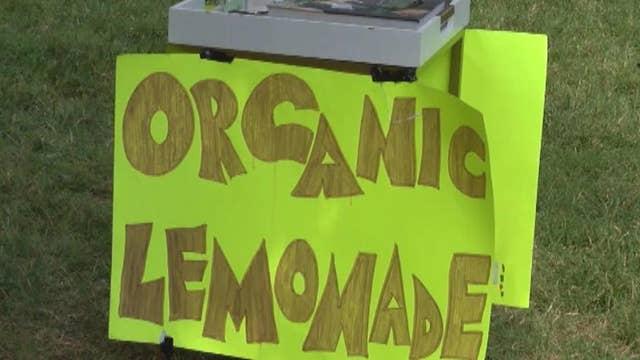 9-year-old robbed at gunpoint at his lemonade stand