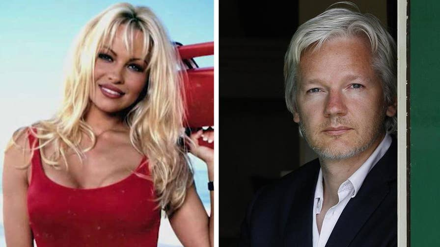 Actress turned activist Pamela Anderson joins Objectified and speaks about her relationship with WikiLeaks founder Julian Assange.