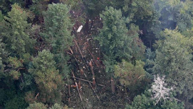 Investigators search site of Seattle plane crash