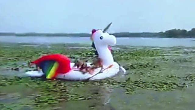 Police save women stranded on unicorn raft