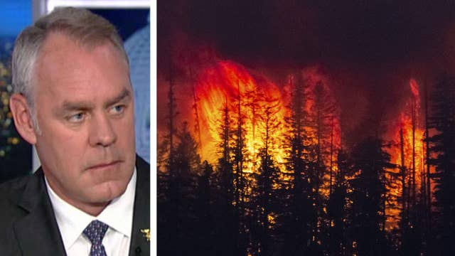 Zinke: California wildfires driven by 'way too much fuel'