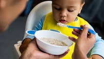 """A new report published by Consumer Reports found """"concerning levels"""" of heavy metals in some popular baby food products. What baby foods are in question and how dangerous are they to your child's health?"""
