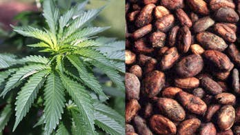 Proponents of pot-infused coffee tout 'medical and health' benefits