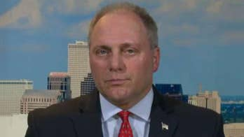 Rep. Steve Scalise on 2018 midterms: Don't let Democrats reverse our success
