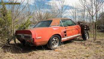A legendary Ford Mustang that many thought was destroyed 50 years ago has been discovered rotting away in a Texas field. And it could be worth millions.