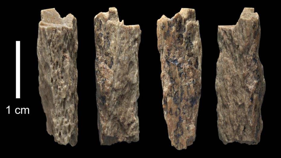 Scientists thrilled to find Neanderthal, Denisovan hybrid