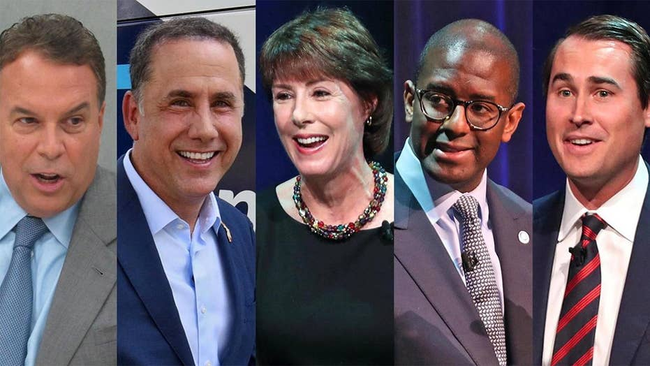 Crowded Dem field fights for Florida governor nomination