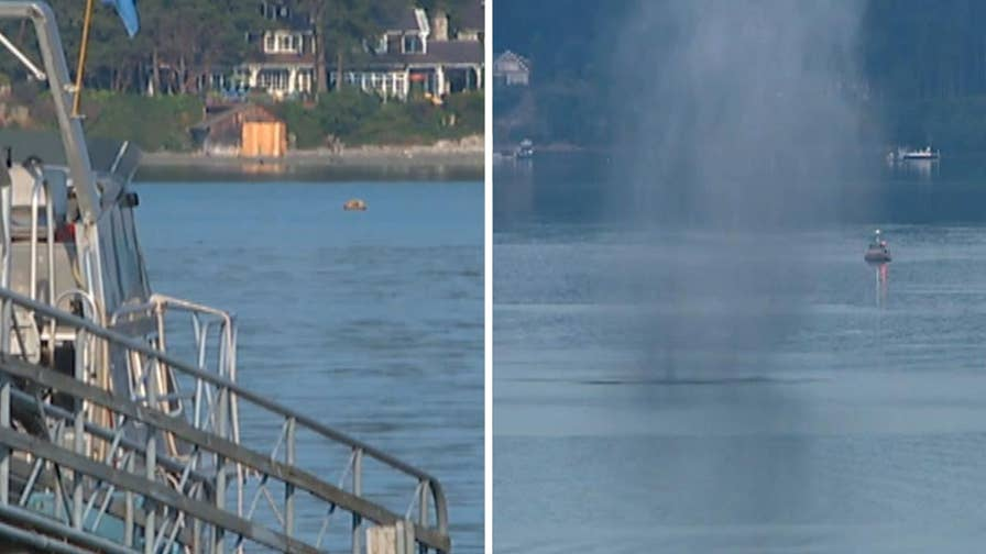 U.S. Coast Guard drags mine to safe area in Puget Sound to detonate after evacuation nearby marina, homes and businesses.