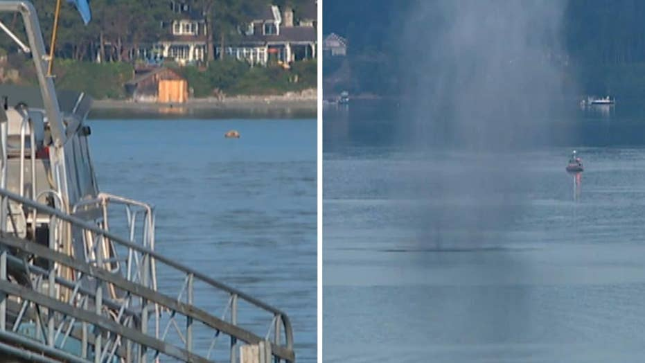 Mysterious mine floating in Puget Sound detonated