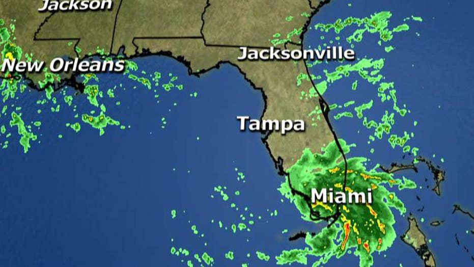 Tropical storm warning issued for parts of the Gulf Coast