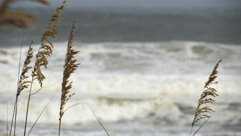 Despite warnings of storm surges, flash floods and wind gusts potentially reaching 70 miles per hour, many in Orange Beach appeared unfazed; in fact, some said they were excited to witness the weather phenomenon.