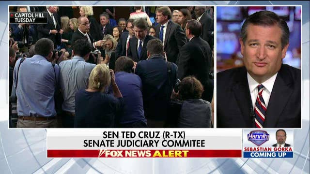 Cruz: Dems Haven't 'Laid a Single Glove' on Kavanaugh