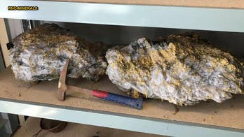 A mine in Australia has produced what its owner believes are two of the biggest gold specimens in recorded history. Early estimates from RNC Minerals have put the total take of coarse gold from the cut at more than 578 pounds, or more than $11.5 million worth.