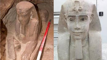 A sandstone sphinx has been discovered by archaeologists during a project to reduce groundwater at Kom Ombo temple in Aswan.