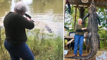 Judy Cochran believes the 12-foot alligator was responsible for the disappearance of her miniature horse three years ago.