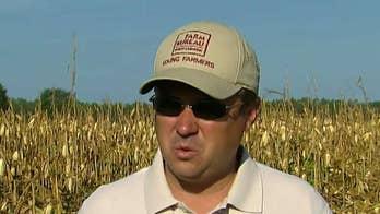 North Carolina farmers suffer major losses after storm
